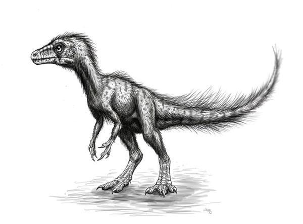 Sciurumimus albersdoerferi by MALvit
