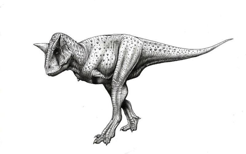 Carnotaurus Sastrei Malvit Deviantart