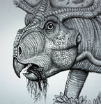 Protoceratops  chew  the  tubers