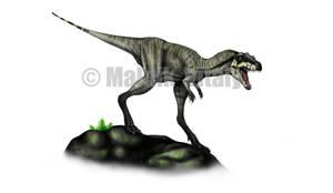 Camarillasaurus cirugedae by MALvit