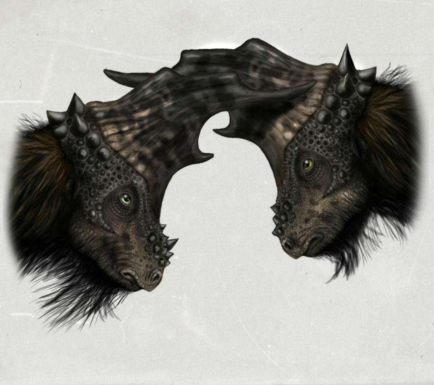 http://fc08.deviantart.net/fs71/f/2013/042/6/4/two_horny_pachycephalosaur_by_malvit-d5ukpnj.jpg