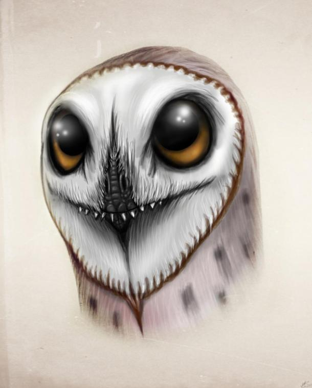 http://fc08.deviantart.net/fs70/f/2013/046/c/6/anurognathus___owl__all_yesterdays_by_malvit-d5v1if9.jpg