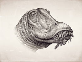 Periodontitis in Diplodocus by MALvit