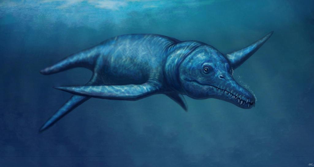 http://fc04.deviantart.net/fs70/i/2013/200/5/d/pliosaurus_irgisensis_by_malvit-d6e88au.jpg