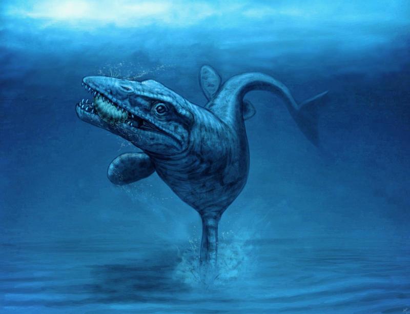 http://fc06.deviantart.net/fs70/i/2013/209/f/d/tylosaurus_riapaeus_by_malvit-d6fel9a.jpg