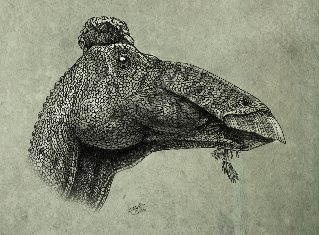 Edmontosaurus regalis by MALvit on DeviantArt