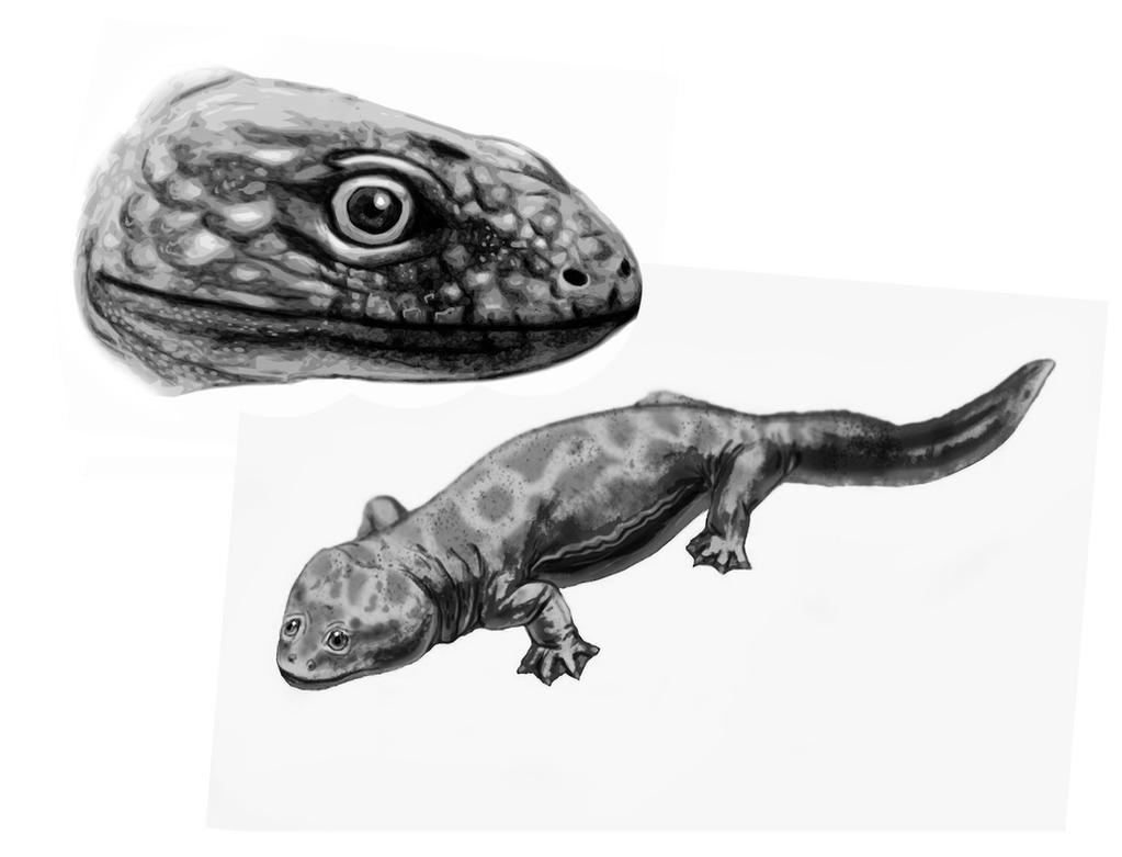Tupilakosaurus wetlugensis by MALvit