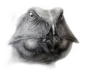 Aquilops americanus by MALvit
