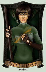QUIDDITCH - Regulus Black version 2 by call-me-special