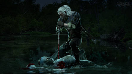 What a Witcher Does Best