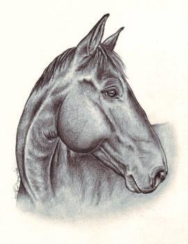 Dukat Portrait