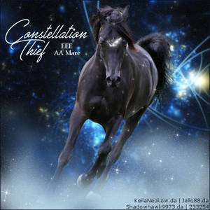 Horse Avatar ~ Constellation Thief