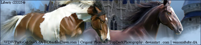 Stable Banner ~ Royal RIDs
