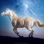 HEE Horse Avatar | Comet
