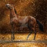 HEE Horse Avatar | Glitz n Glam