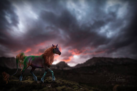 Finished YHH | Sierra Sunset