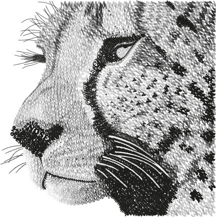 cheetah made out of letters by starfish4444 on deviantart