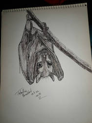 inktober 22 bat by somechick73