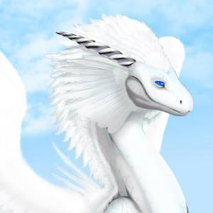 MagiDrakie's Profile Picture