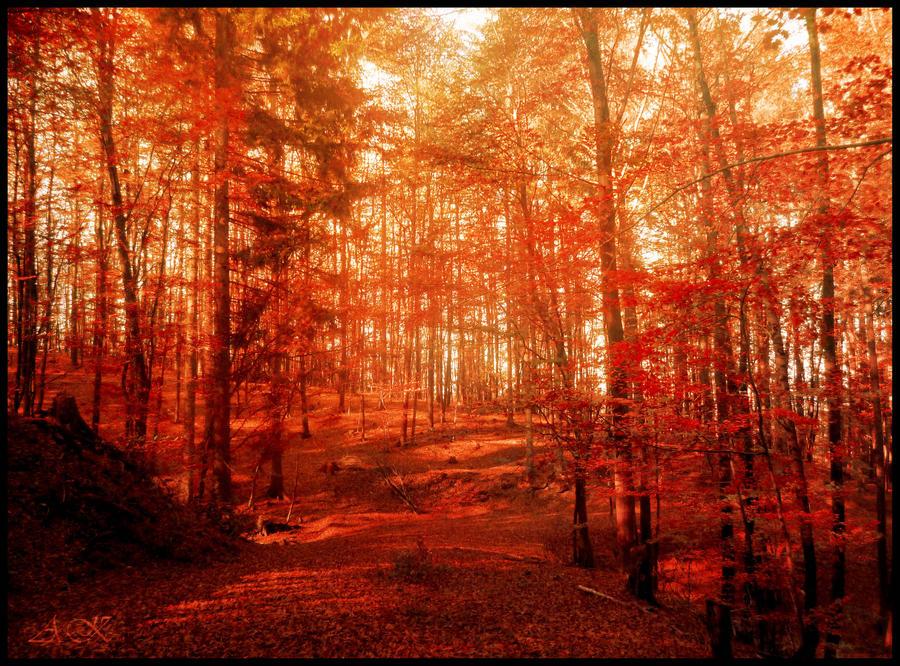 Fall II by Wolfi-sama