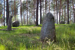 Mystical Stones in Forest