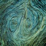 Seaside Wood Texture Macro