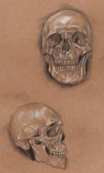 practise skulls