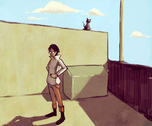 cat on the wall by kinnas