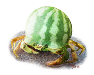 melon crab by gkotm