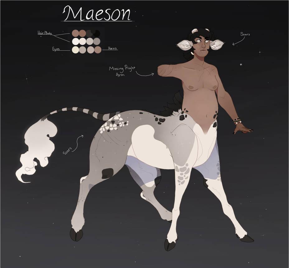 Maeson Ref