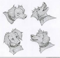 Headshot Expressions: Luna