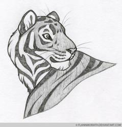 Vasillias the Tiger by FlannMoriath