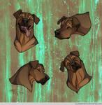 Headshot Expressions: Bilbo by FlannMoriath