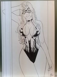 Black Cat in production