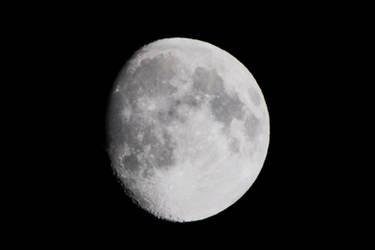 Halloween Moon 1