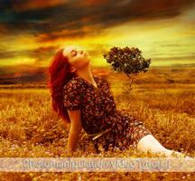 Free Photomanipulation Tutorial 005 (Video) by FP-Digital-Art