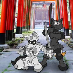 Were Ninja