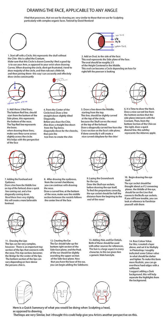 Facial Construction, based on Andrew Loomis by DavidRowland on