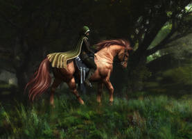 Black Forest by x-bossie-boots-x
