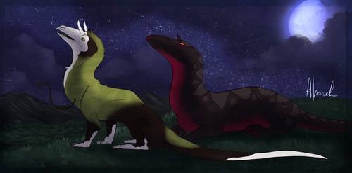 Reepul Midsummer Event- Stargazing