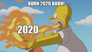 Burn 2020 burn!