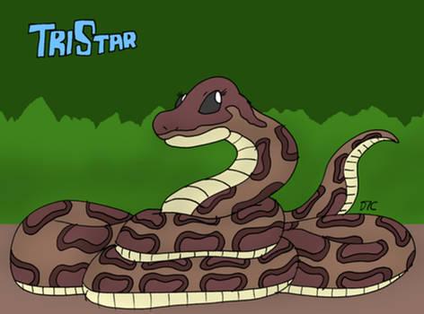 TriStar Kaa