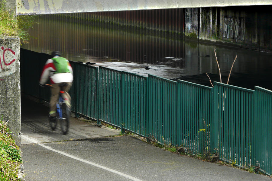 Under the bridge by organicvision