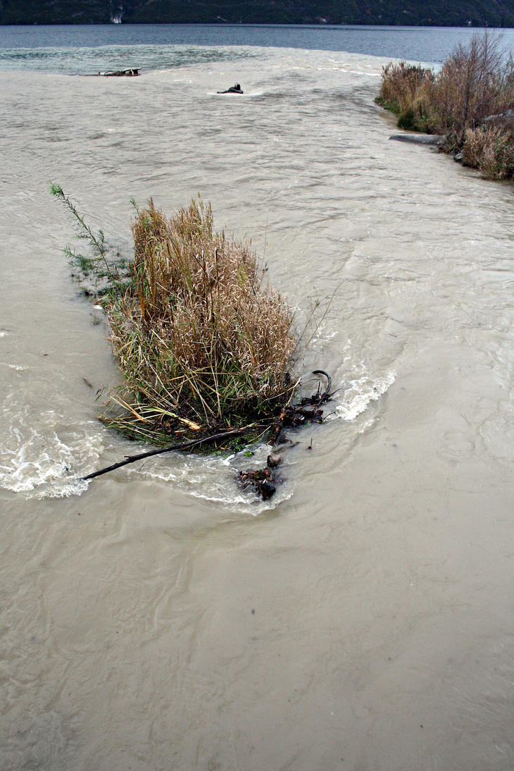 river meets lake by organicvision