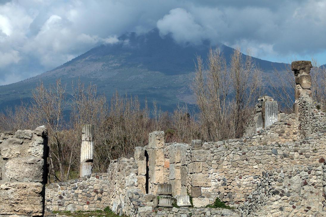 Vesuvinum by organicvision