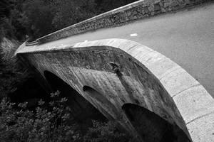 Bridging the Gap by organicvision
