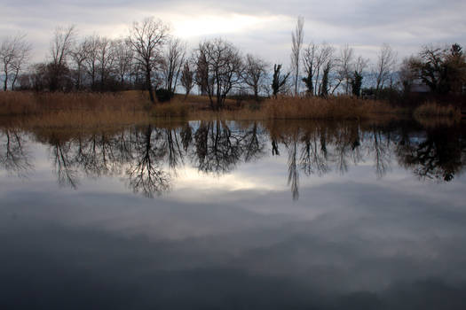 Lac Saint Andre Reflections