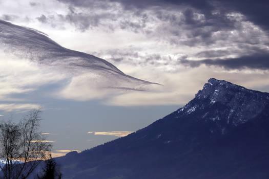 Bird over the Mountain