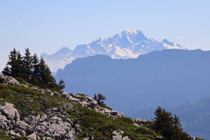 Mont Blanc from the Chartreuse