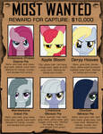 Ponyville's Most Wanted